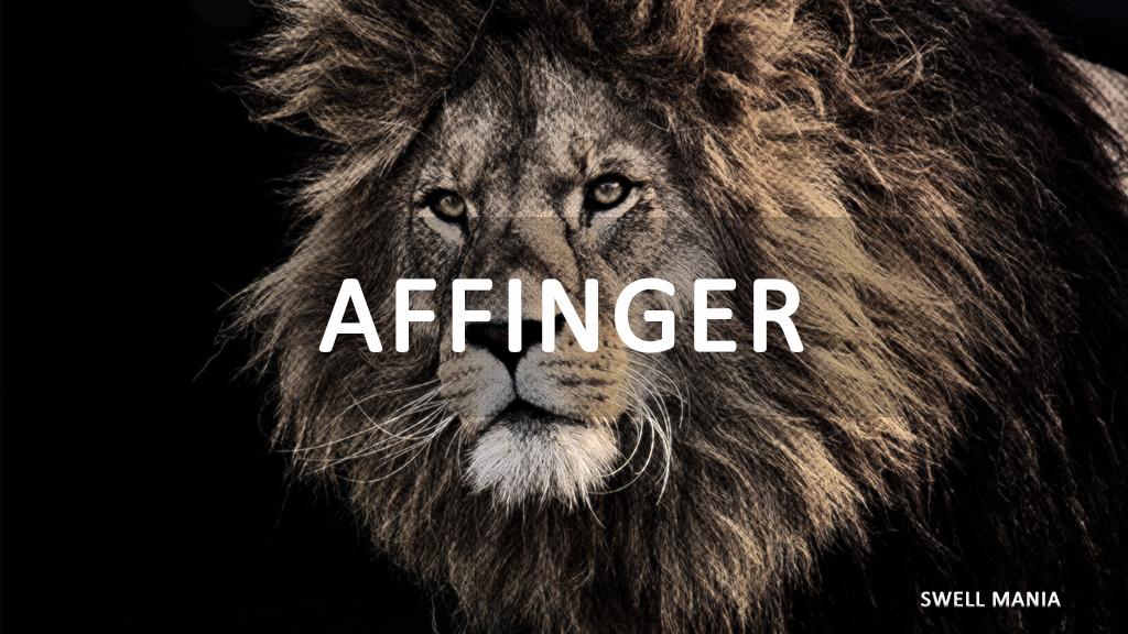 比較1:AFFINGER5(アフィンガー)とSWELLの比較
